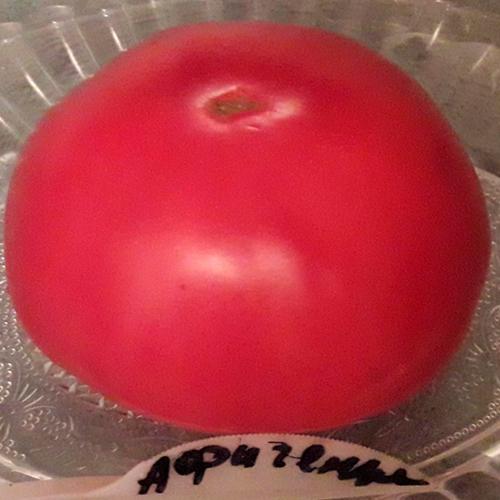 Afigennyye томаты