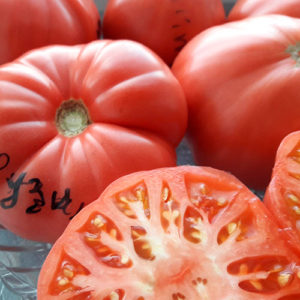 Gruzinskiye томаты