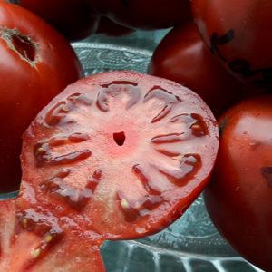 Kazachka томат