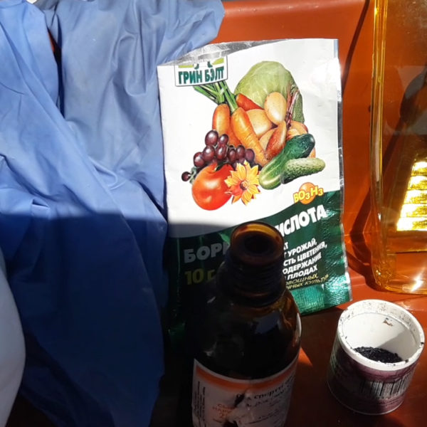 Раствор от фитофторы на томатах, готовим сами!