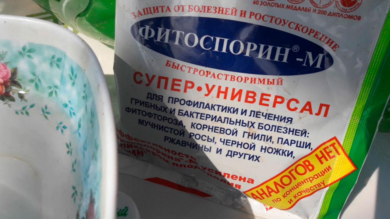 Fitosporin-pravil'no-razvodim-Matochnyy-rastvor!